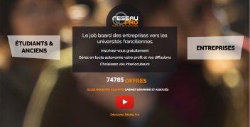 Visuel de la page d'accueil du site internet de réseau pro